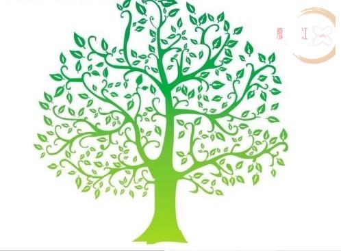 树(总目录)